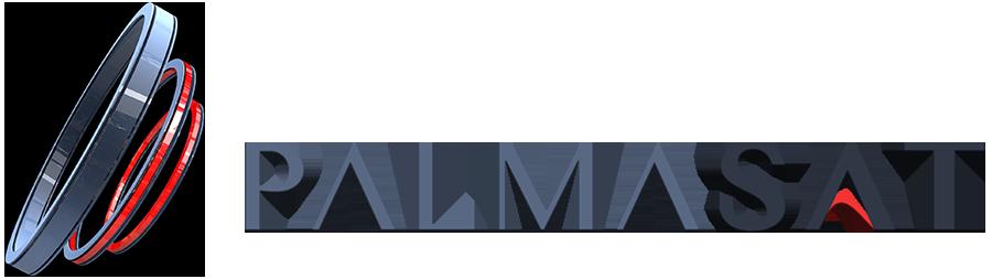 PalmaSat